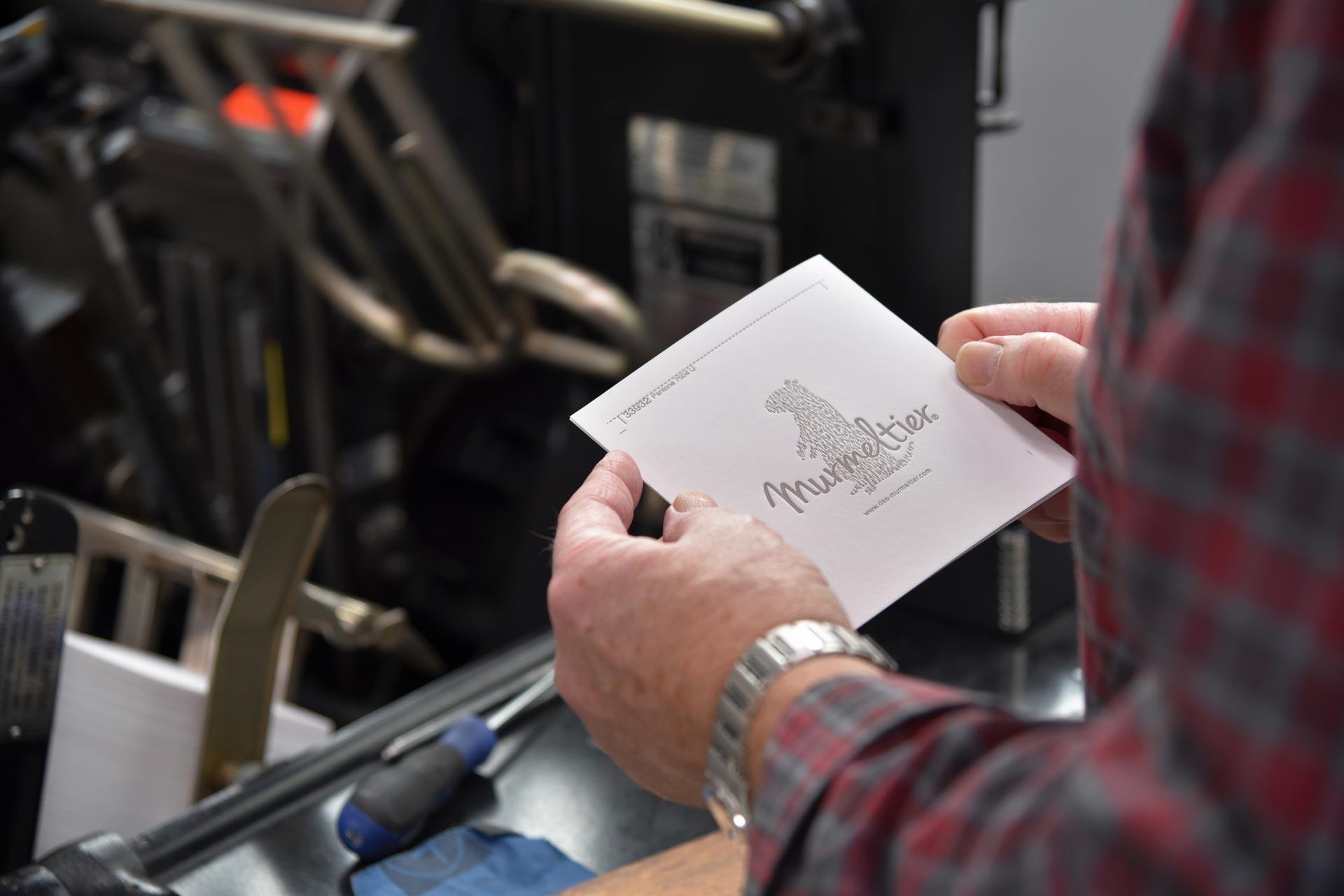 Murmeltier Print-Ausstattung